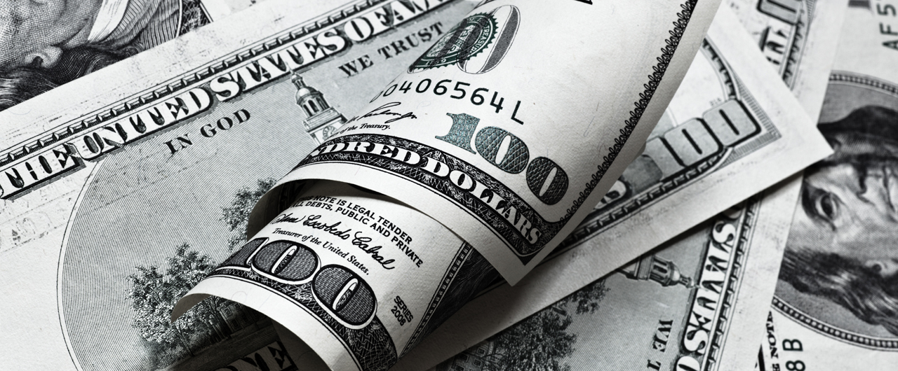 Islami Dollar Bachat Account